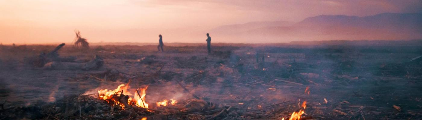 Deforestation and Envornmental Degradation
